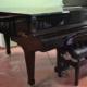 Pianoforte a coda Kawai KG3