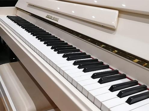 Pianoforte Verticale Rieger Kloss 115